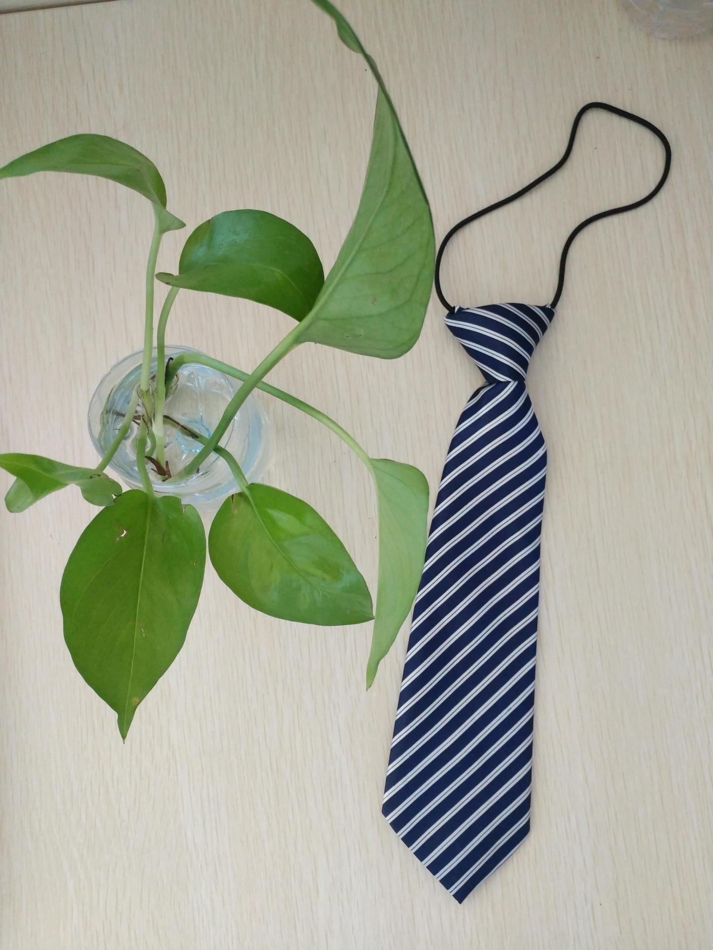 2020新款儿童西服条纹领带西装配饰赠品一件代发厂家批发小礼品
