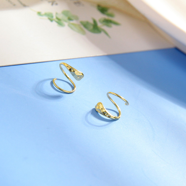 wholesale C40393 design metal small irregular earrings