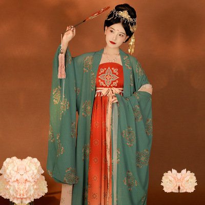Hanfu women's country ancient Tang Dynasty Hanfu women's tanghezi skirt large sleeve shirt covered with silk cover