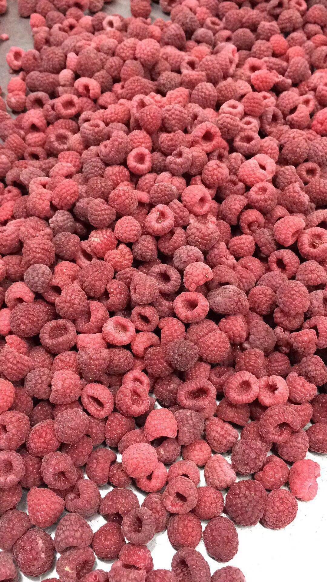 【冻草莓】速冻草莓 冷冻草莓 果汁果馅果酱果泥烘焙水果原料供应