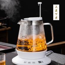 新功煮茶器耐热玻璃小型升降式煮茶壶黑白茶自动蒸汽养生电热茶炉