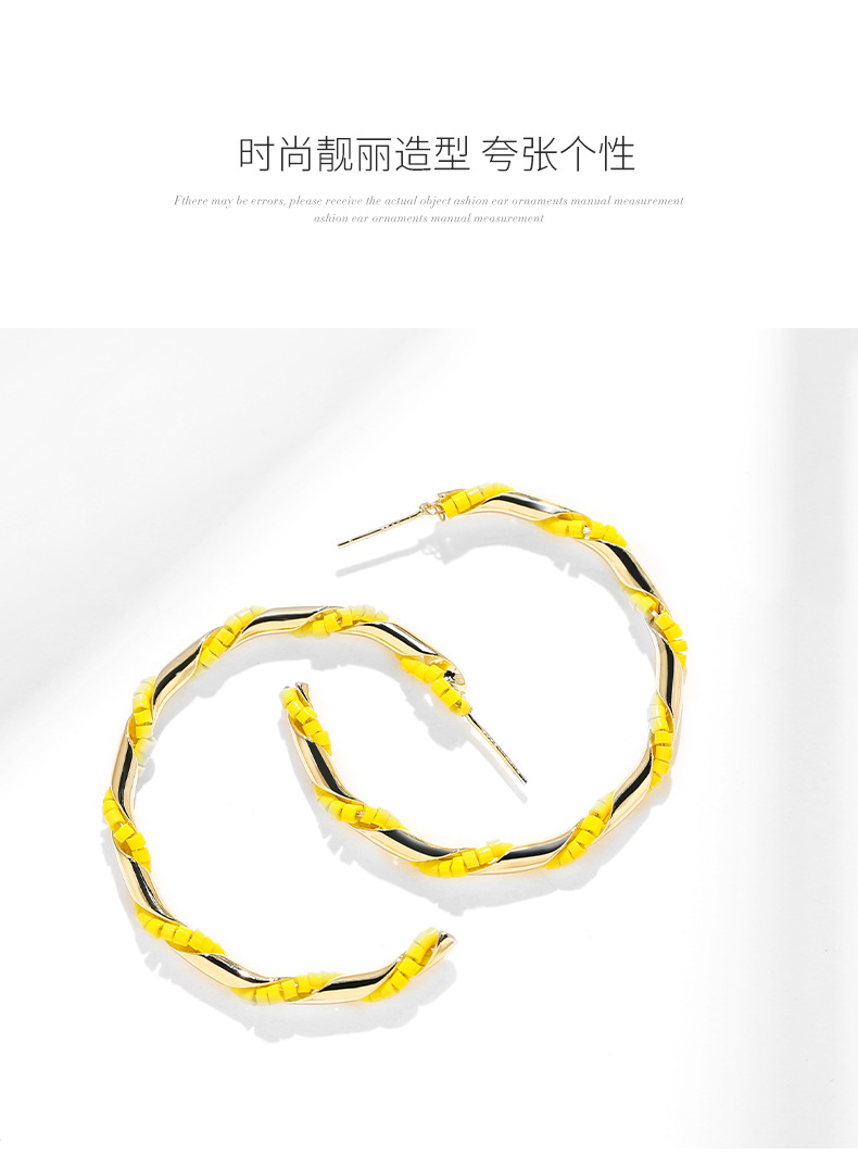 925 silver needle exaggerated temperament fashion wild simple fresh trend earrings NHPP198721
