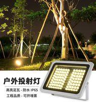 LED投光灯20w36W48w50w80w100w泛光灯户外工程防水广告射灯照树灯