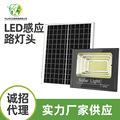 APS太陽能投光燈一拖二太陽能燈投光燈太陽能投光 太陽能燈