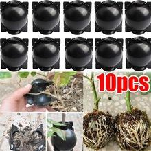 跨境现货 扦插嫁接生根盒园林树木高空压枝生根繁殖器繁殖球