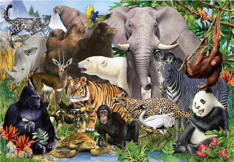 贝陛拉拼图1000片成人超难减压动物风景儿童益智玩具厂家定制批发