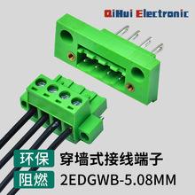 穿墙式接线端子2EDGWB-5.08MM-2-24P插拔式接线端子 对插绿色端子
