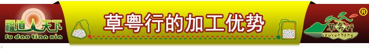 20200623菊花普洱茶-标题-草粤行的加工优势.jpg