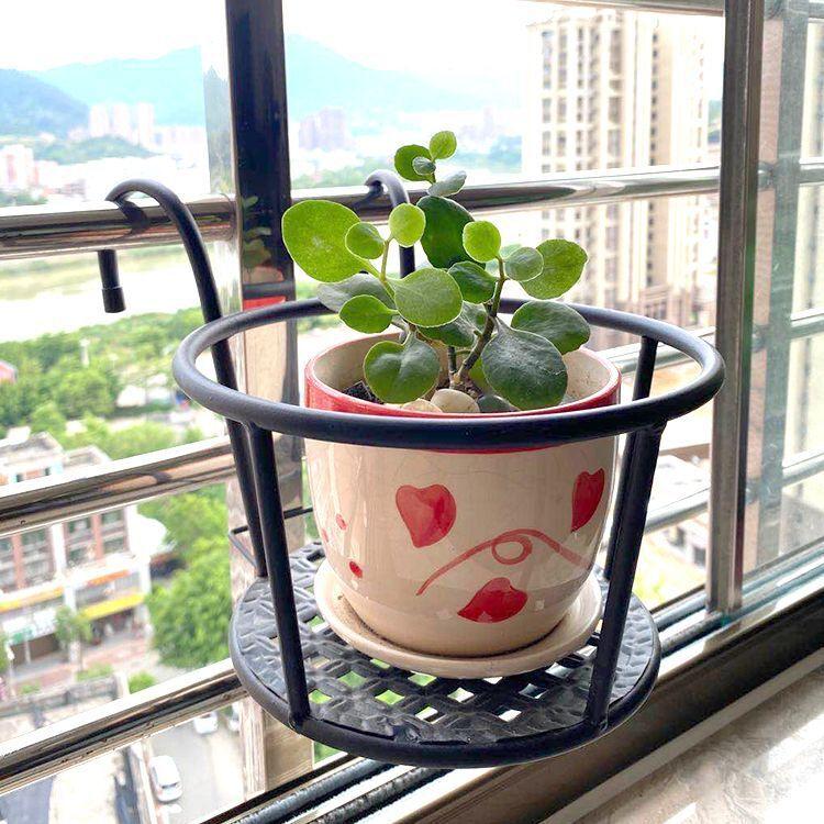 阳台客厅悬挂式吊兰绿萝盆栽壁挂铁艺花架花卉置物架花盆架植物架