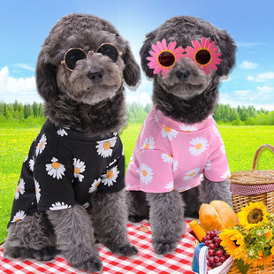 Dog cat clothes spring, summer and autumn new travel pet supplies teddy bear small and medium-sized dog daisy net red