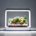 智能微景观植物补光灯植物补光照明植物生长灯DIY盆景懒人景观