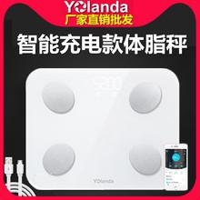 yolanda云康宝智能USB充电脂肪秤体重称体脂电子磅测脂体脂仪新品