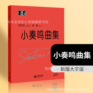 Minor Sonata Collection, Big Character Edition, Big Note Edition Wei Danwen Kulao Minzu Masterpiece Piano Etude Textbook
