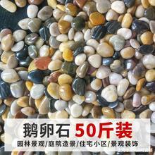 50斤鹅卵石铺路铺地庭院石子园林造景天然石头雨花石原石大鹅暖石