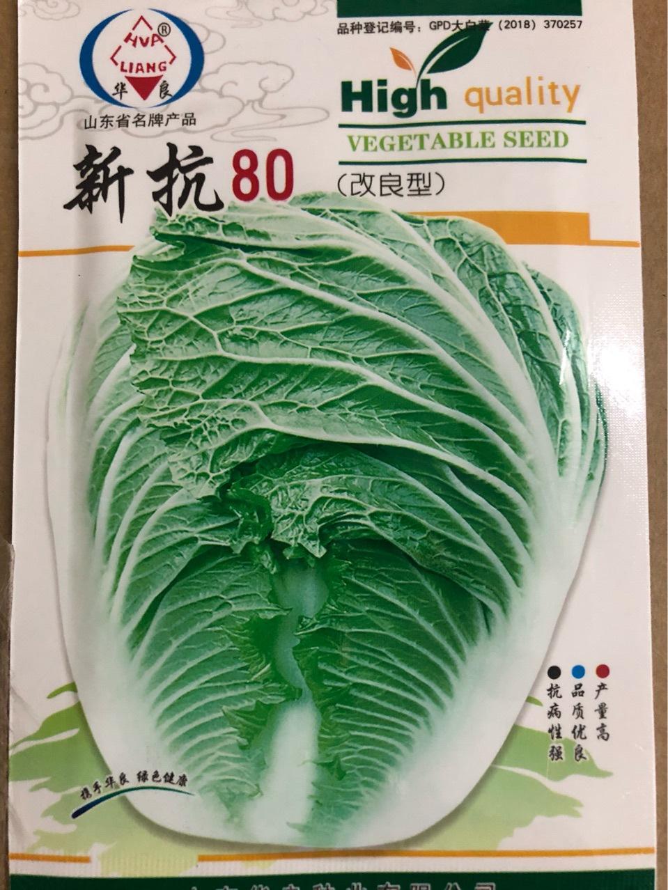 批发山东华良新丰抗80改良型大白菜种子 阳台菜园基地菜籽 直销