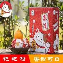 招财猫粑粑柑(包邮一件代发)精装精美礼盒皮薄肉多手剥新鲜水果