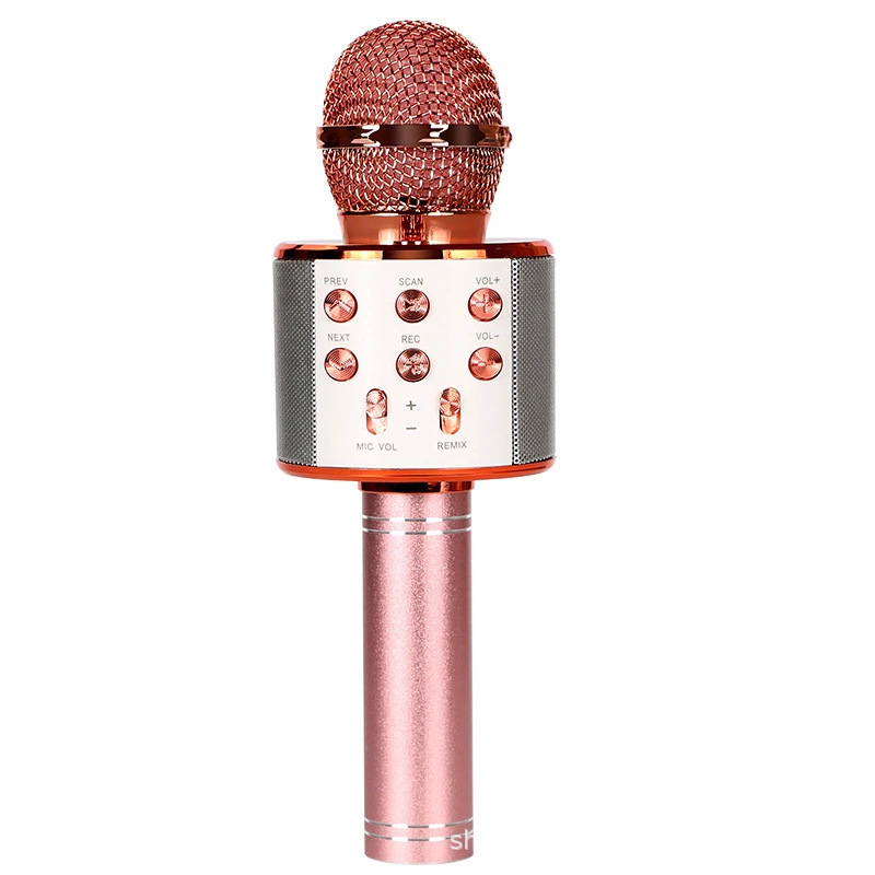 WS858 Bluetooth Microphone Speaker Microphone Integrated Home Wireless Karaoke Wheat Vibrato Sing It Practice Song Cross-border Exclusive Supply
