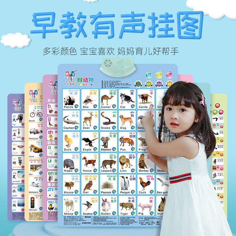 送电池全套有声挂图早教幼儿童看图识字发声学习挂图拼音汉字数字