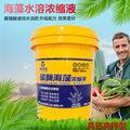 海沃生海藻水溶肥 农用作物营养液 高钾型氨基酸有机冲施肥桶装