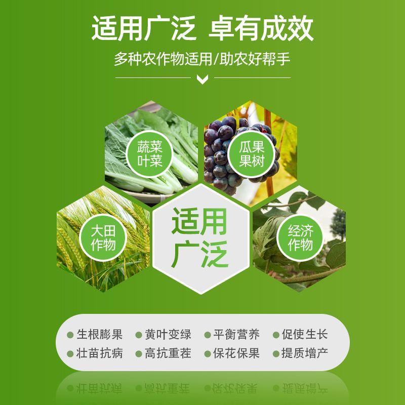 直供货源黄腐酸钾咖啡颗粒 蔬菜果蔬养根肥料 黄腐酸钾颗粒冲施肥
