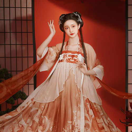 Women Chinese Embroidered Hanfu Fairy dress Tang Han dynasty chinse traditional folk costumes stage performance film cosplay  photos shooting empress princess dresses
