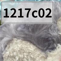 紫色兔子毛绒玩具     0.3kg     1217c02