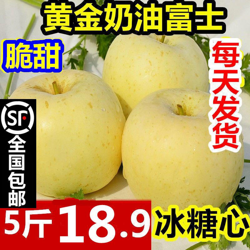 烟台奶油富士苹果新鲜水果10斤代批发糖心山东黄金奶油苹果礼盒装