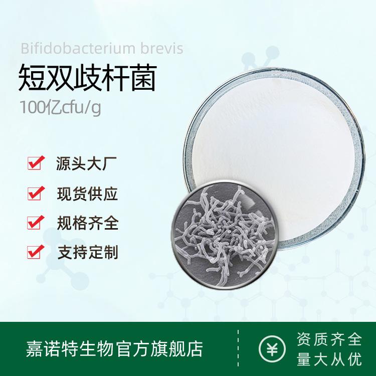 短双歧杆菌  活性益生菌冻干粉 短双岐杆菌 乳酸菌原粉 源头批发