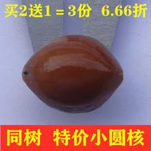 橄榄核108大橄榄核原料老油核原籽大核特大超大20颗/袋起批特价