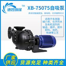 XB-75075自吸泵卧式自吸排污泵无堵塞污水自吸泵小型抽水泵