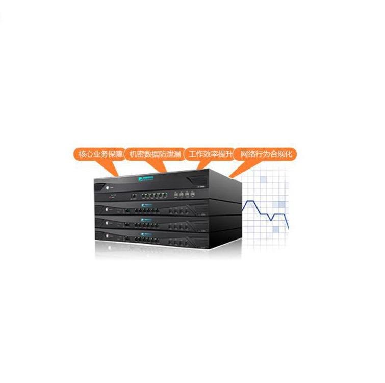 奇安信科技NI3300-ZO上网行为管理系统