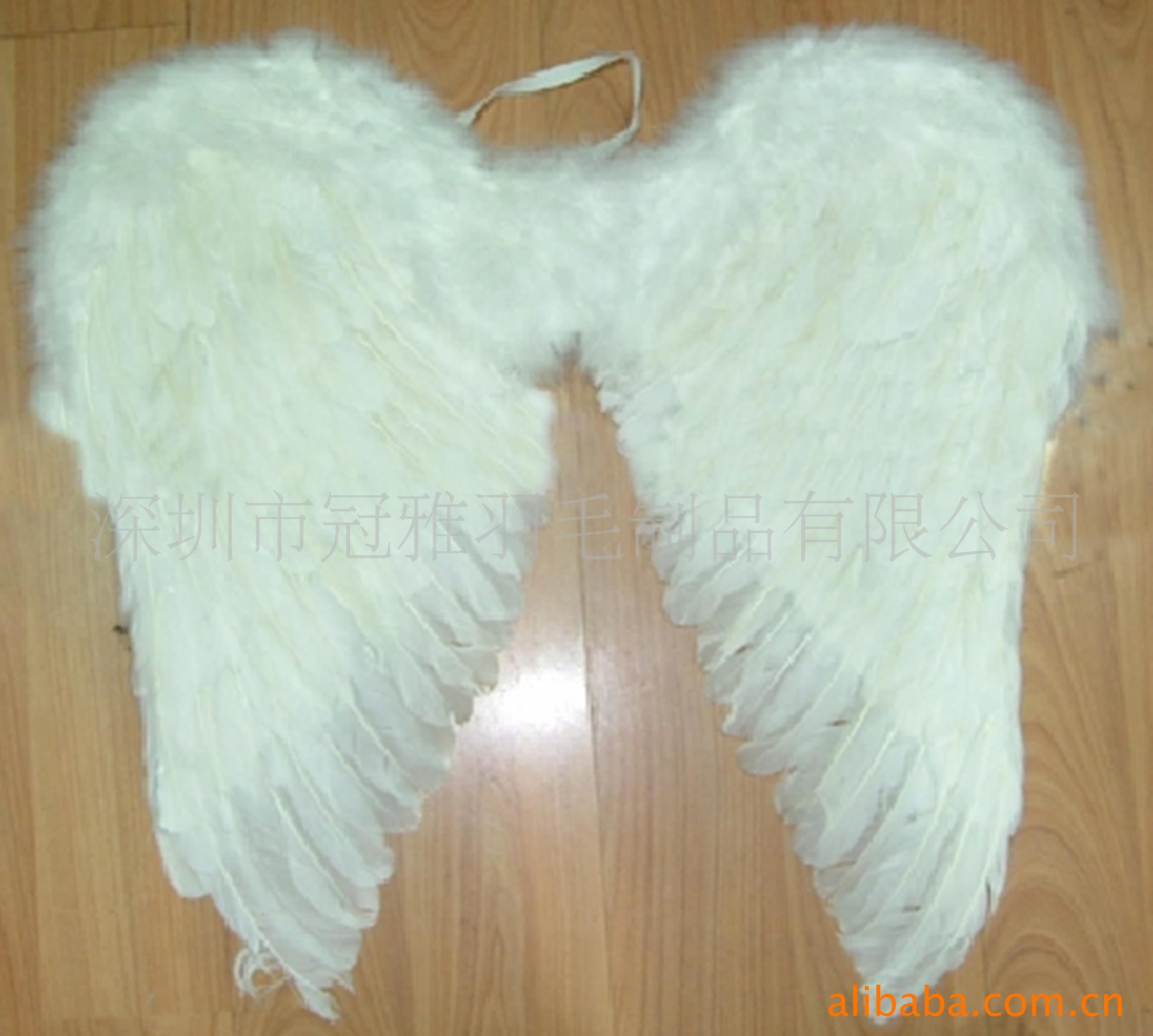 feather wings 1